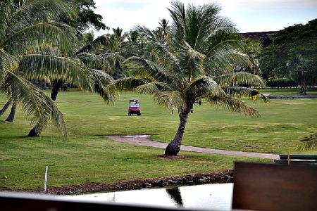 Fiji golf at Denarau golf course