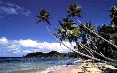 A Fiji beach on Kadavu Island, Fiji