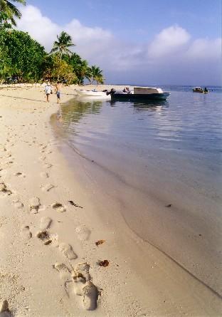 Leleuvia Beach Fiji