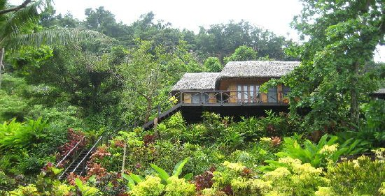 Matangi Island Resort's one of their treehouses in Fiji