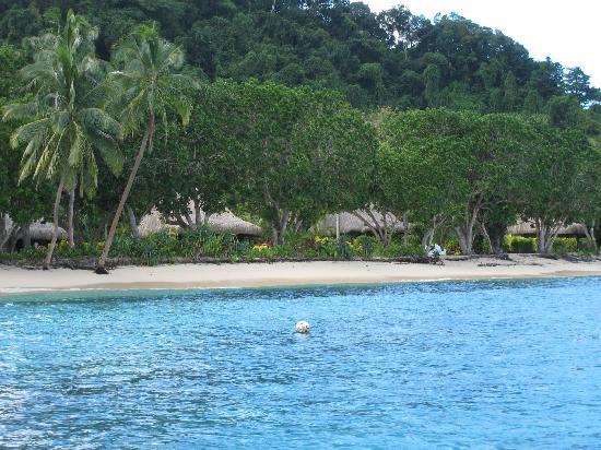 Qamea resort a good Fiji dive resort