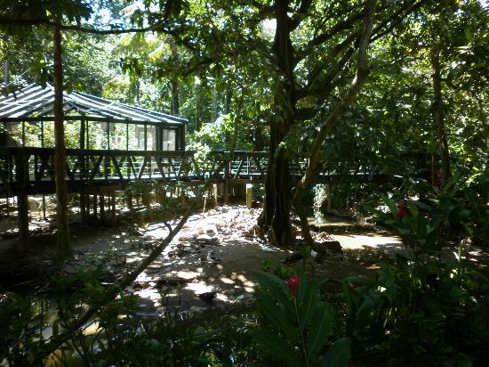 Kula Eco Park near Sigatoka Fiji
