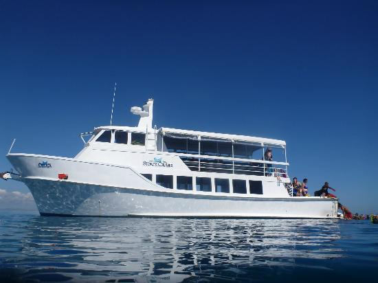 Sorck Cruises offer day Fiji cruises