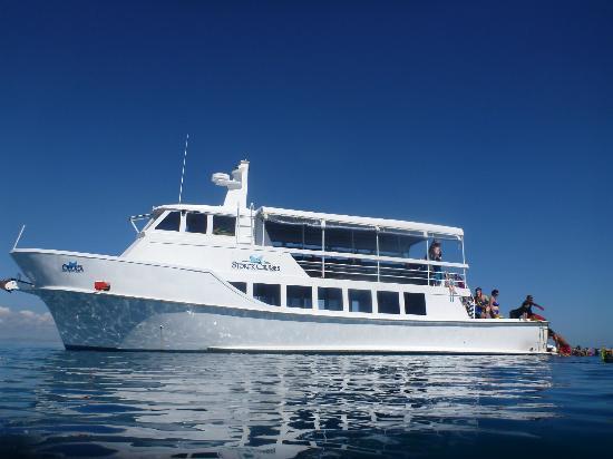 Sorck Cruises offer day Fiji cruises