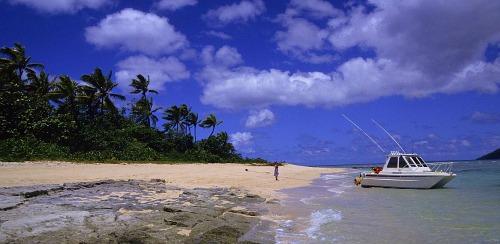 A Fiji beach at Taveuni Island