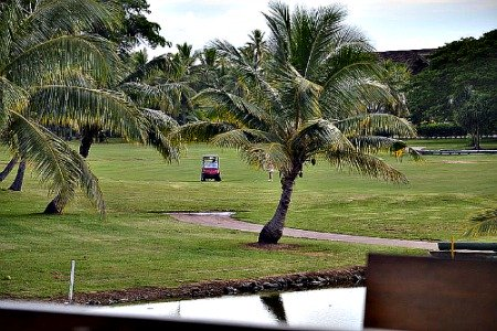 Fiji golf at Denarau golf course