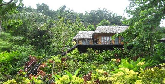 Matangi Island Resort's one of their treehouses in Fiji