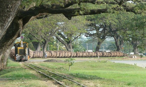 sugar train entering Lautoka Fiji