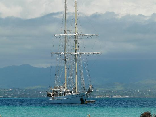 Sailing and chartering ships with Captain Cook Cruises Fiji