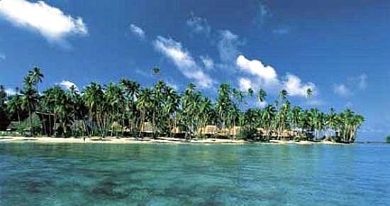 Jean-Michel Cousteau Fiji family resort